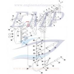 O-ring collettore aspirazione Mercury, Marine 826157