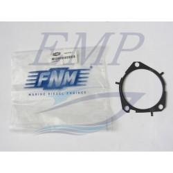 Guarnizione pompa acqua FNM 3.021.0132.1