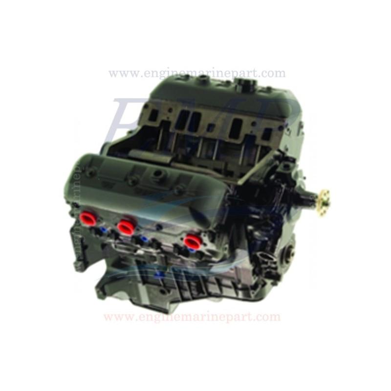 4.3L 6 cilindri dal 99' in poi Nuovo monoblocco Omc / Volvo Penta - 99' in poi