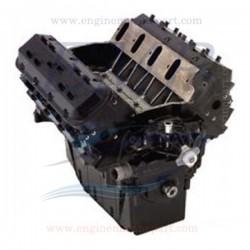 8.1L Liter 496 V8 - 420 & 425 CV Monoblocco Omc / Volvo Penta rigenerato