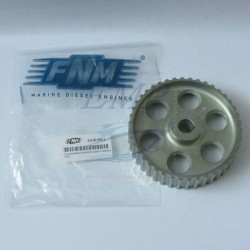 Ingranaggio Distribuzione FNM3.018.009.1
