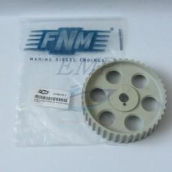Ingranaggio Distribuzione FNM 3.018.011.1