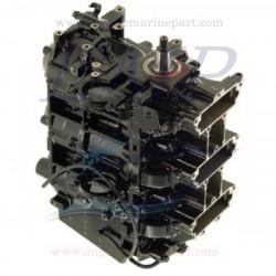 HP 90-100-115 DFI monoblocco rigenerato Mercury, Mariner