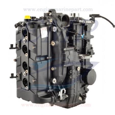 Monoblocco rigenerato Mercury - Mariner hp 115 EFI 4 Tempi