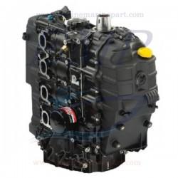 Monoblocco rigenerato Mercury - Mariner hp 150 EFI 4 Tempi