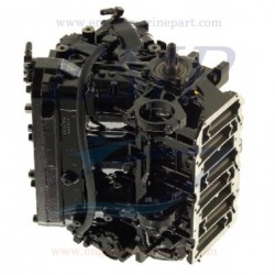 Monoblocco rigenerato Mercury - Mariner hp 115, 135 , 150 DFI