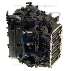 Monoblocco rigenerato Mercury - Mariner hp V-225 DFI