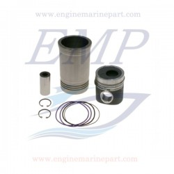 Canne cilindro e pistoni Volvo Penta EMP 22185019