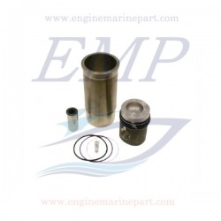 Canne cilindro e pistoni Volvo Penta EMP 276901