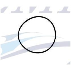 O-ring girante Yanmar EMP 24341-000600