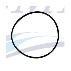 O-ring girante Yanmar EMP 24341-000700