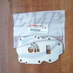 Piastrina in acciaio corpo pompa Yamaha / Selva 6CE-44323-00 , 01
