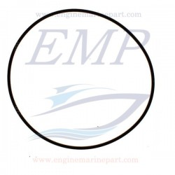 O-ring supporto paraolio Volvo Penta 946743