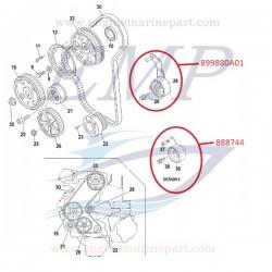 Cuscinetto tendicinghia distribuzione Mercruiser 882507, 899880A01