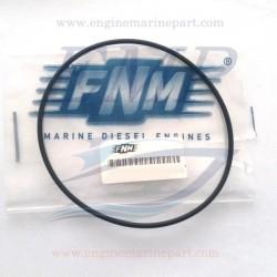 Anello Tenuta scambiatore di calore FNM 4.128.015.1