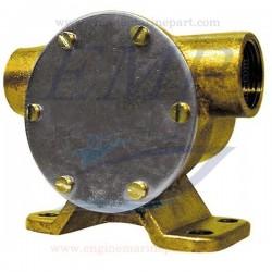 Pompa acqua completa FNM 2.014.007.1