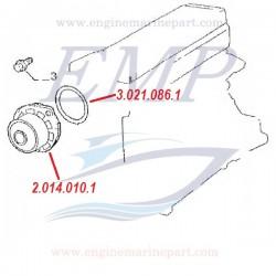 Guarnizione pompa acqua centrifuga FNM 3.021.086.1
