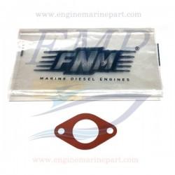 Guarnizione termostato FNM 3.021.029.1