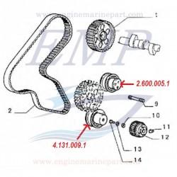 Tendicinghia distribuzione 1698 cc, FNM 4.131.009.1Cuscinetto folle distribuzione 1698 cc, FNM 4.131.009.1