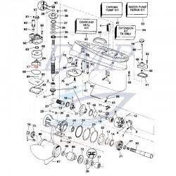 O-ring pompa acqua  Johnson, Evinrude, BRP, 3852089, 0310584
