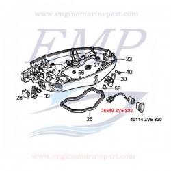 Supporto pulsante Power trim calandra Honda 40114-ZV5-820