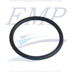 O-ring pompa acqua Yanmar EMP 24321-000350