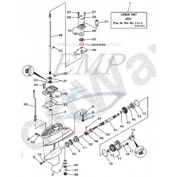 O-ring corpo pompa Yamaha / Selva 93210-44704