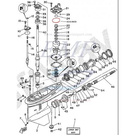 O-ring corpo pompa Yamaha / Selva 93210-86M38