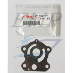 Piastrina in acciaio corpo pompa Yamaha / Selva 67F-44323-00