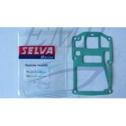Guarnizione gambale motore 2 tempi Selva 3540020 / 3530220
