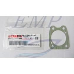 Guarnizione corpo pompa Yamaha / Selva 6E0-44315-A0