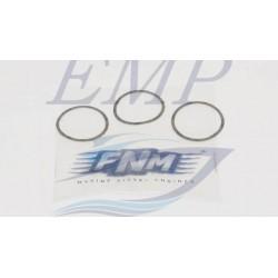 Guarnizione turbocompressore FNM 3.021.099.1