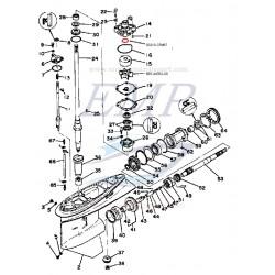 O-ring corpo pompa Yamaha 93210-37M67