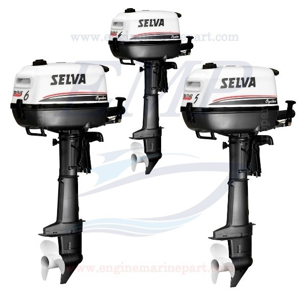 HP 4-5-6 OYSTER SELVA