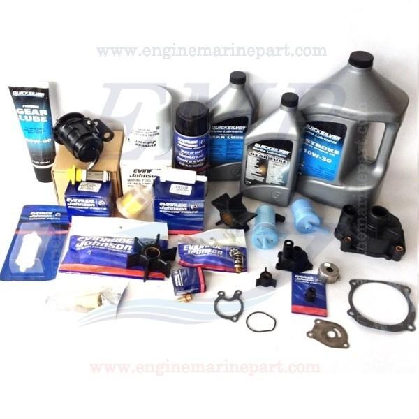 FICHT RAM Kit Tagliandi Evinrude BRP